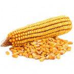 Протруйники для кукурудзи