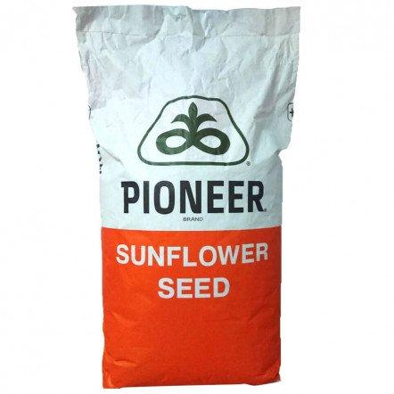 Семена подсолнечника П64ГЕ118 (P64НЕ118)