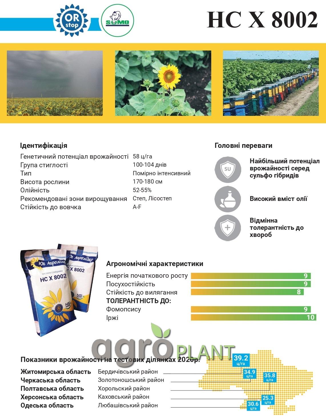 Семена Подсолнечника НС Х 8002 Описание и Характеристика