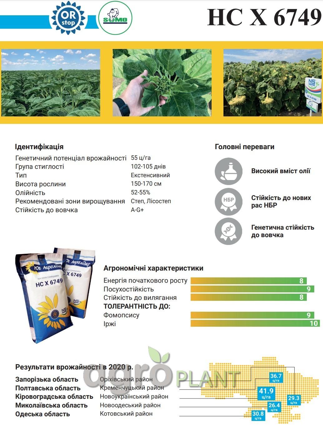 Семена Подсолнечника НС Х 6749