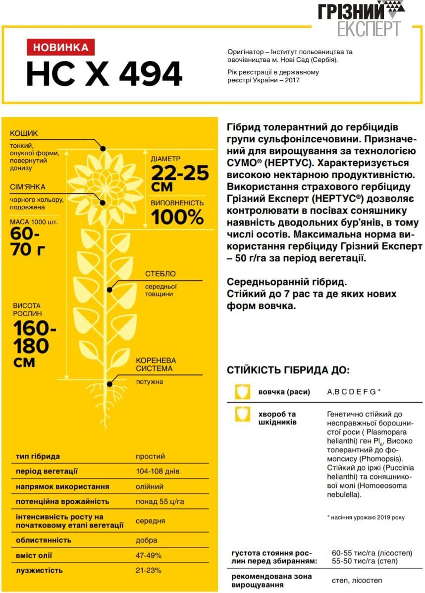 Семена Подсолнечника НС Х 494 описание и характеристика