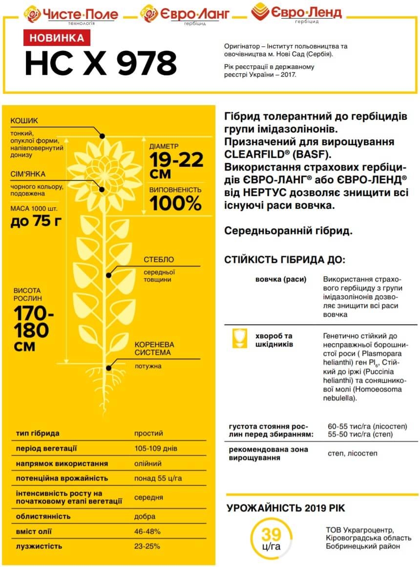 Семена Подсолнечника НС Х 978 описание и характеристика