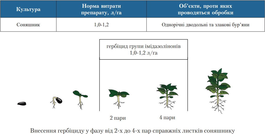 Рекомендации применения гербицидов группы имидазолинонов для подсолнечника ВНИС