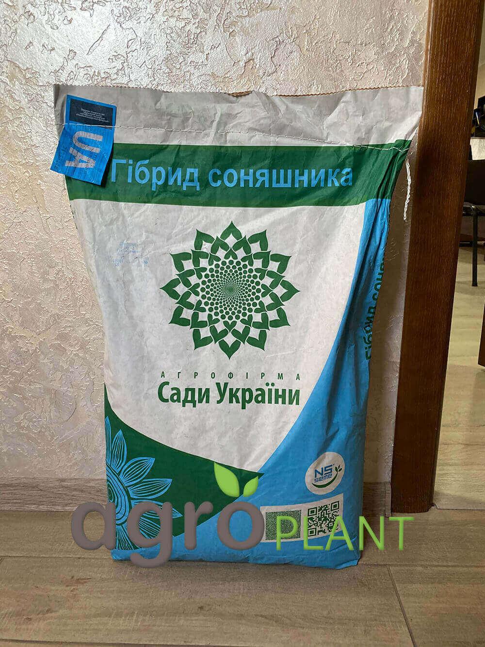 Семена Подсолнечника Рими 2 - Сады Украины Фото