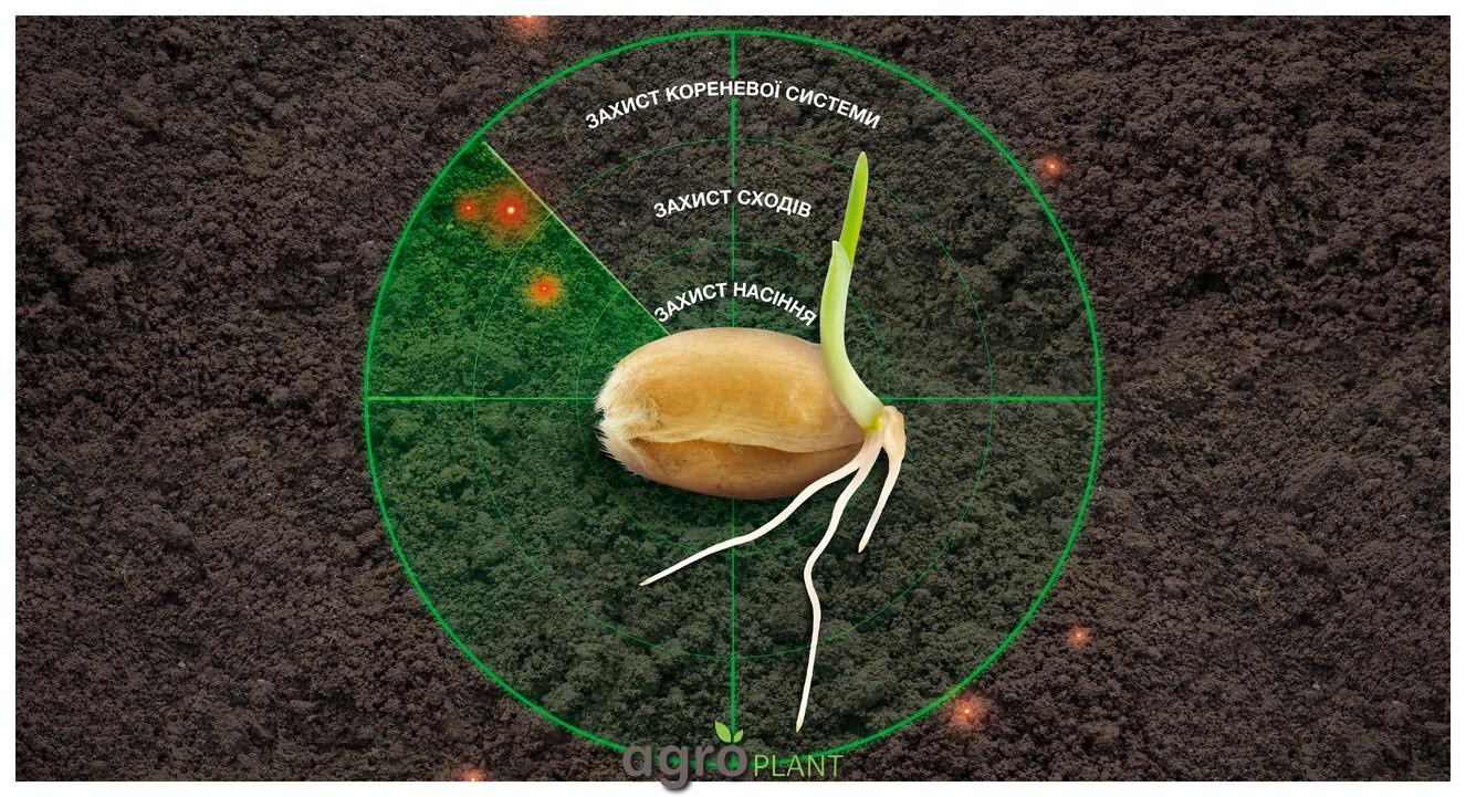 Винцит Форте защита корневой системы зерновых культур