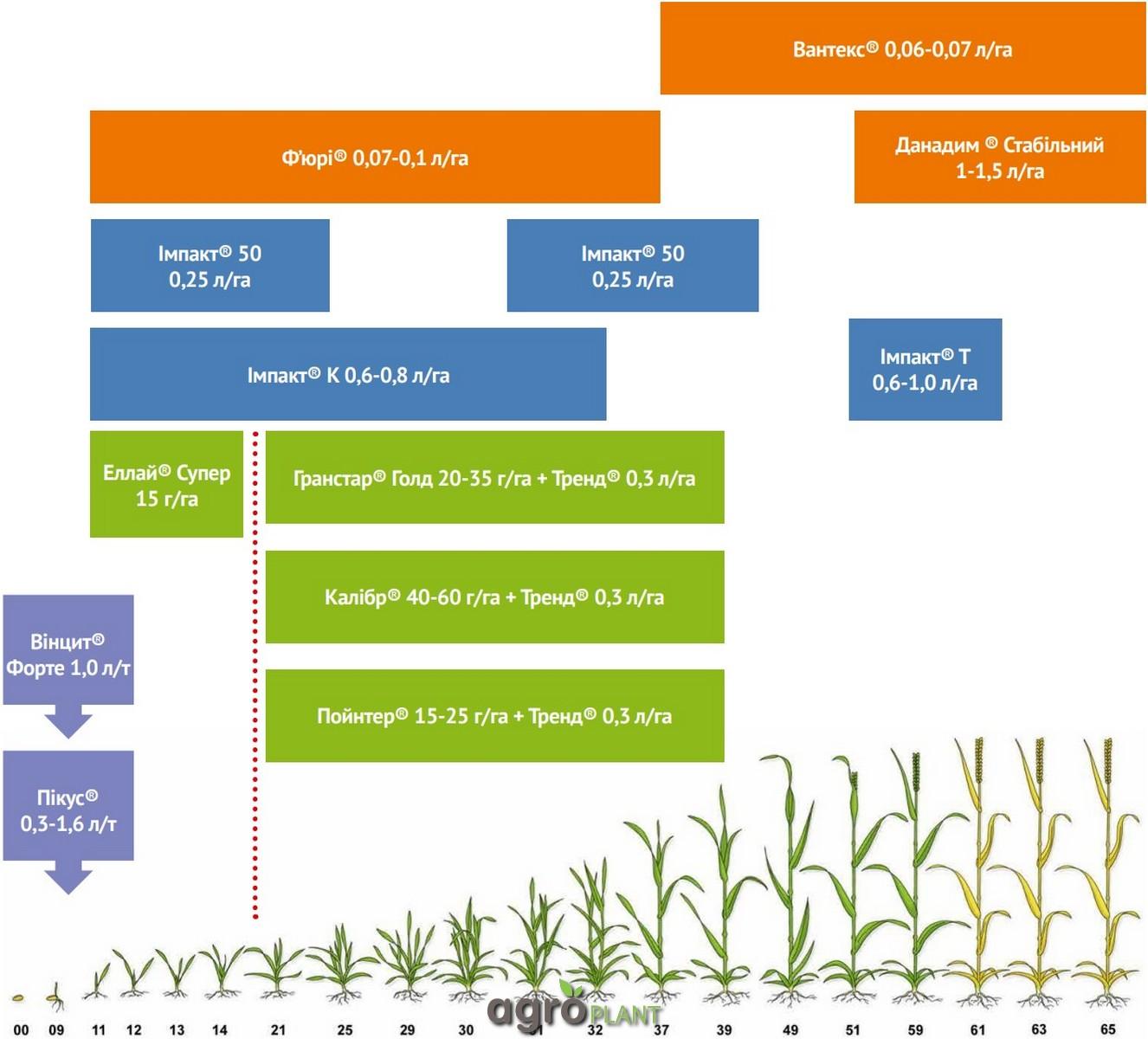 Система защиты озимой пшеницы протравителей Винцит Форте