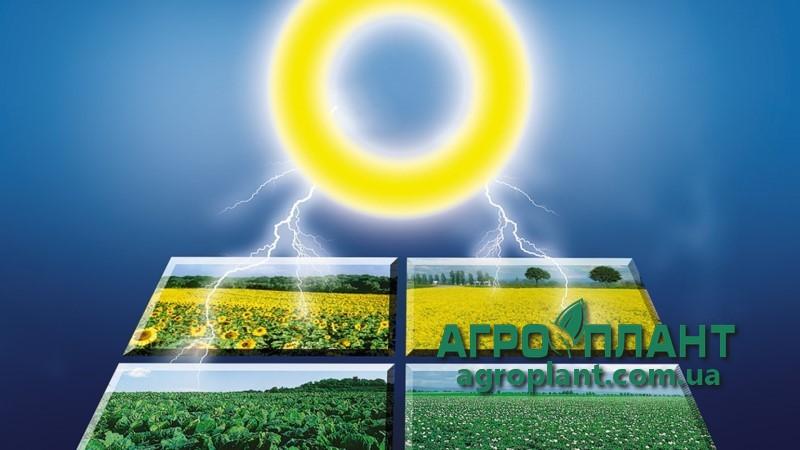 Арамо 45 - гербицид