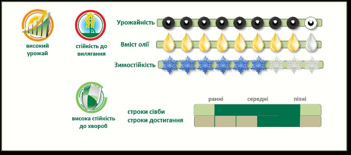 Преимущества озимого рапса PT200CL ПТ200ЦЛ
