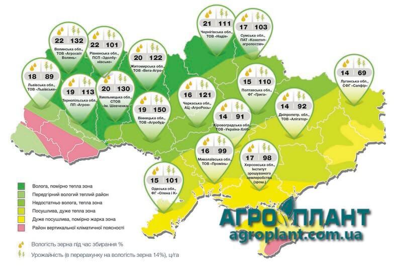 Фактическая урожайность кукурузы Телиас в Украине