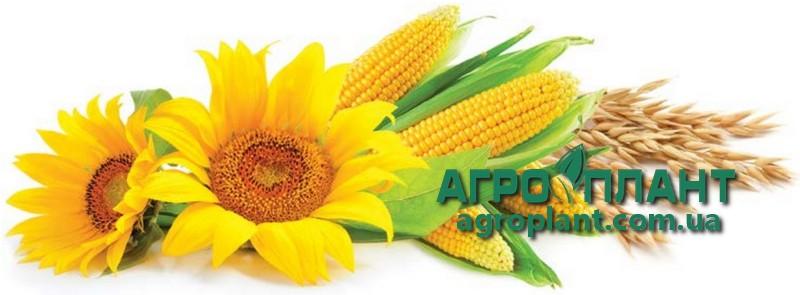 Купити Нертус Старт - добриво для соняшника, кукурудзи, пшеницы, ячменю