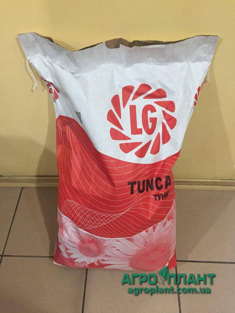 Подсолнечник Тунка фото мешка